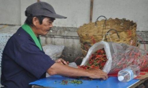 Zdjecie TAJLANDIA / Bangkok / Bangkok / Sortowanie papryki