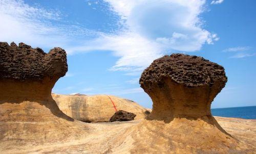 Zdj�cie TAJWAN / Wanli / Yehliu / Formacje skalne (Yehliu)