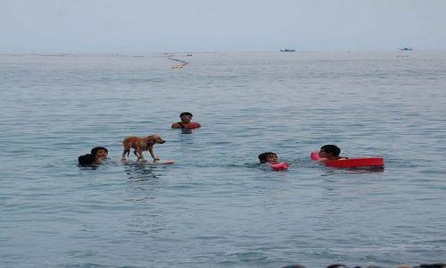 Zdjęcie TAJWAN / - / Hualien / Surfers Rulez