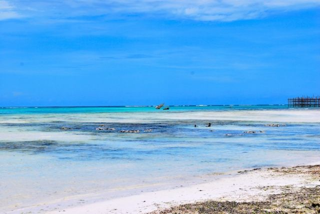 Zdjęcia: Zanzibar, Raj..., TANZANIA