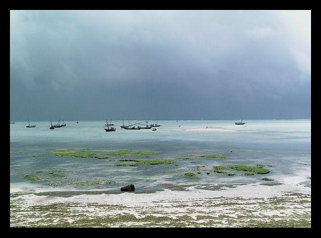 Zdjęcia: Nungwi, Zanzibar, Po burzy..., TANZANIA