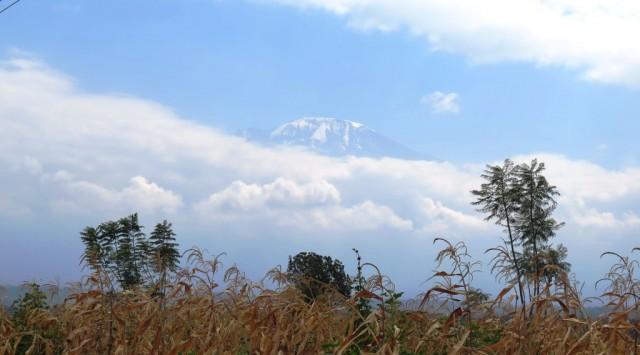 Zdjęcia: Tanzania, Tanzania, Kili4, TANZANIA