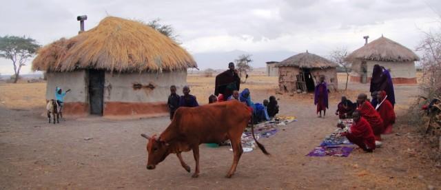 Zdjęcia: Tanzania, Tanzania, Kili25, TANZANIA