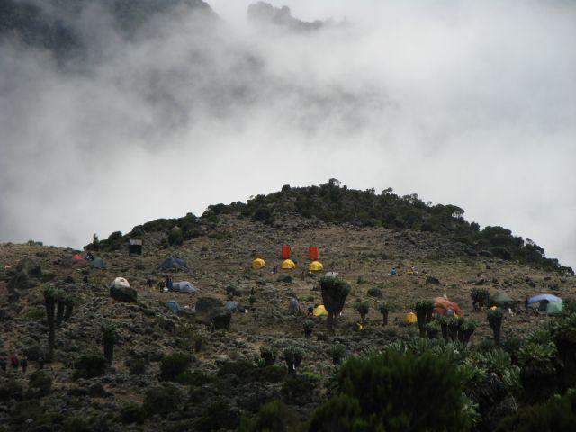 Zdjęcia: Machame Route, Kilimanjaro, Afryka, , Obóz na wys. 3700 - Kilimanjaro, TANZANIA