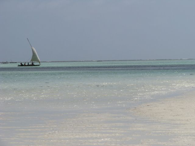 Zdjęcia: Zanzibar wschodnie wybrzeże, Afryka, Żaglówka, TANZANIA
