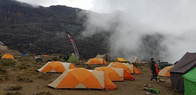 Zdjęcia:  , Kilimandżaro, Barranco Wall, TANZANIA