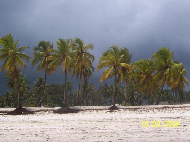 Zdjęcia: Jambiani, Zanzibar, przed burzą, TANZANIA