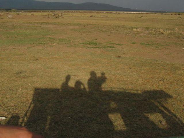 Zdjęcia: sawanna, NGORONGORO, z innej perpektywy, TANZANIA