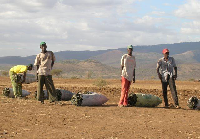 Zdjęcia: Mto-wa-Mbu, Tanzańczycy, TANZANIA