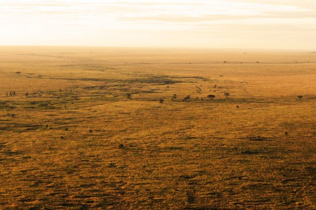 Zdjęcia: Serengeti, Serengeti, widok na sawannę , TANZANIA