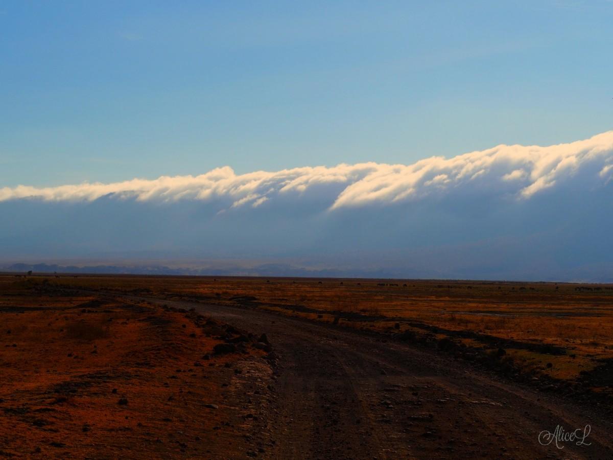 Zdjęcia: Ngorongoro, Północ, Ngorongoro1, TANZANIA