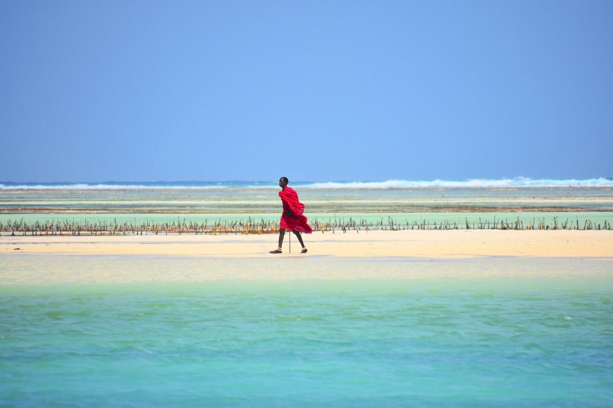 Zdjęcia: wschodnie wybrzeże, Zanzibar, Masaj, TANZANIA