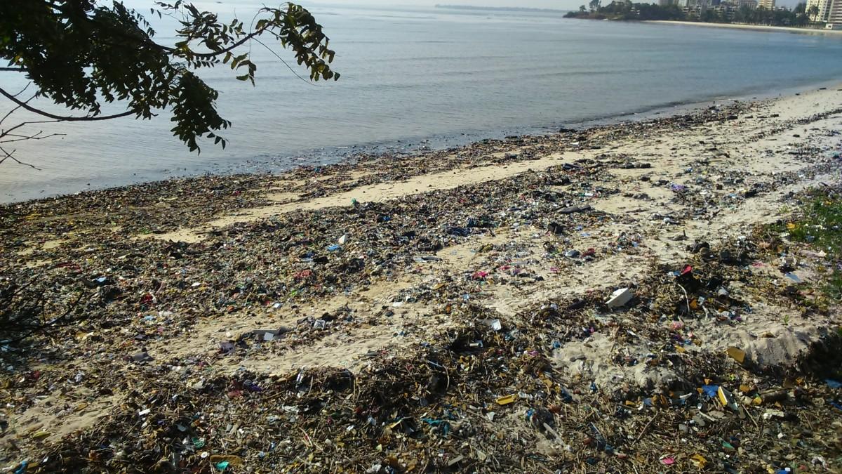 Zdjęcia: zatoka Palm Beach, Dar Es Salaam, z ręcznikami nad ocean i ........., TANZANIA