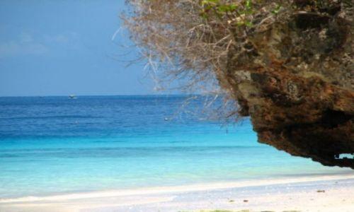 Zdjecie TANZANIA / brak / Zanzibar / raj na ziemi