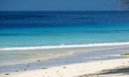 Zdjecie TANZANIA / brak / Zanzibar / plaze Zanzibaru