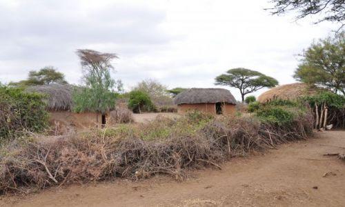Zdjęcie TANZANIA / - / Longido / Masajskie maniaty