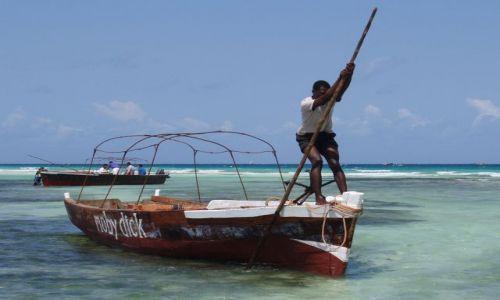 Zdjecie TANZANIA / Zanzibar / Kizimkazi / Moby Dick