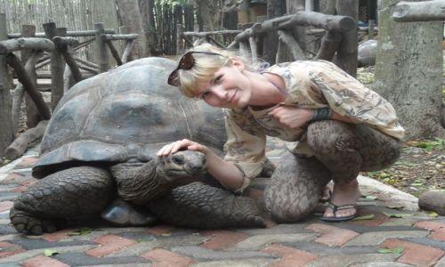 Zdjecie TANZANIA / Zanzibar / Prison Island / Gigantyczny żółw z Algabry na Prison Island