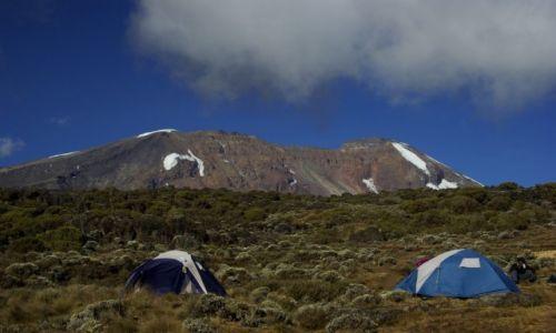 Zdjecie TANZANIA / KILIMANJARO / Park Narodowy Kilimanjaro / KONKURS. W drodze na Kili
