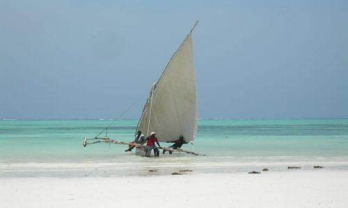 Zdjecie TANZANIA / Zanzibar / Wschodnie Wybrzeże Zanzibaru / Czekając na kas