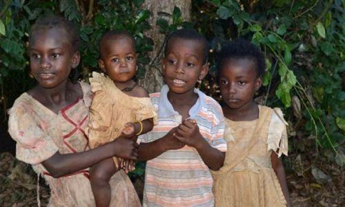 Zdjecie TANZANIA / Zanzibar / Gdzieś na wyspie / A co tam macie?