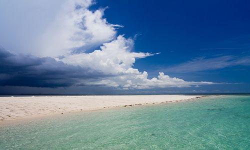 Zdjecie TANZANIA / Zanzibar / Zanzibar / Nadchodzi burza