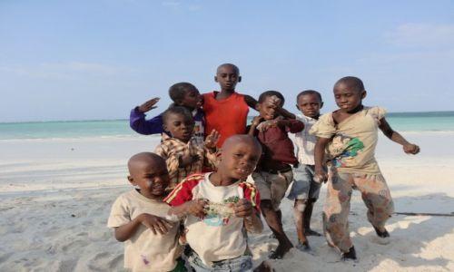 Zdjecie TANZANIA / Zanzibar / Paje / Niekończące się pozowanie