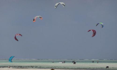 Zdjecie TANZANIA / Zanzibar / Paje / kitesurfing