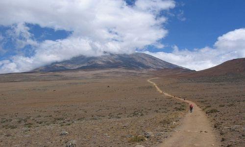 Zdjecie TANZANIA / masyw Kilimandżaro / szlak Marangu / w drodze na szczyt