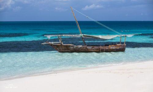 TANZANIA / Zanzibar / Zanzibar / Safari Blue