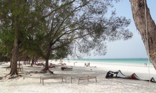 Zdjecie TANZANIA / Zanzibar / Kiwengwa , Beach Resort / Plaża kitesurfi