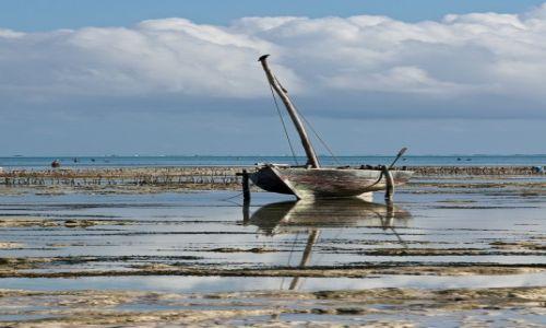 Zdjecie TANZANIA / Zanzibar / Jambiani / Spokój odpływu
