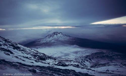 Zdjecie TANZANIA / kilimandzaro / kilimandzaro / po zejsciu ze szczytu