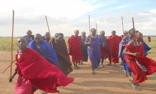 Zdjecie TANZANIA / - / do serengeti / masaje