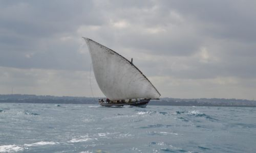 Zdjecie TANZANIA / -Stone Town / Zanzibar / Zanzi