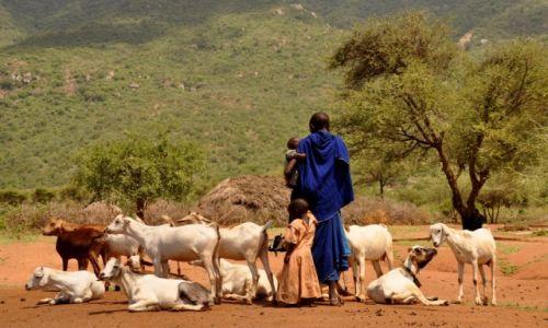 Zdjęcie TANZANIA / Arusha / Arusha / W wiosce Masajów