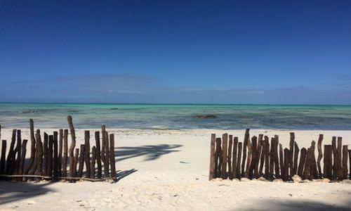 Zdjecie TANZANIA / Zanzibar / Jambiani / Jambiani moje okno na swiat