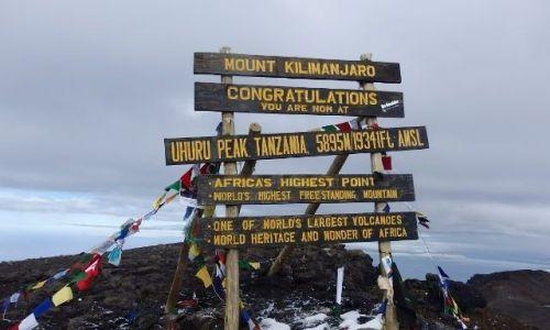Zdjecie TANZANIA / Kilimanjaro / Uhuru Peak / Akuna matata :)