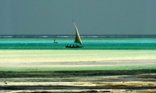 Zdjęcie TANZANIA / Zanzibar / Ocean Indyjski / *