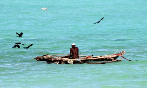Zdjecie TANZANIA / Zanzibar / Paje / Rybak i ptaki