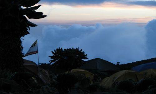 Zdjęcie TANZANIA / Afryka, / Machame Route, obóz na wys.3700 m / W drodze na Kilimanjaro