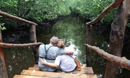 Zdjęcie TANZANIA / Jozani / Jozani Forest / Las namorzynowy