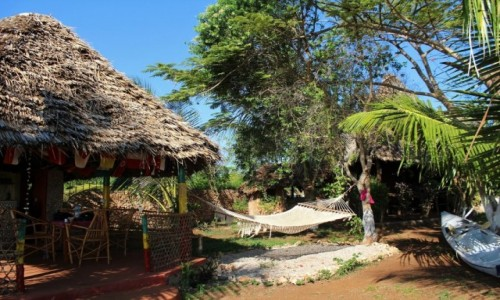 TANZANIA / Zanzibar / Kidoti / Relaxing place in Kidoti (Zanzibar)