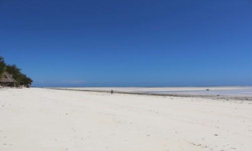 TANZANIA / Zanzibar / Jambiani / Jambiani (Zanzibar)
