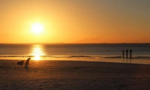 TANZANIA / Zanzibar / Sunset Bay / Kae beach (Zanzibar)