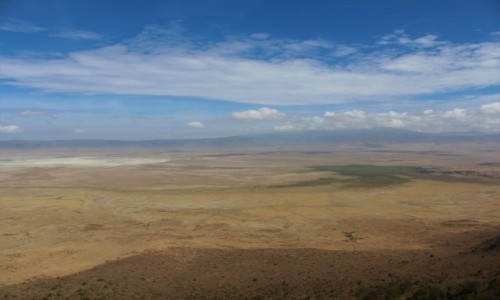 TANZANIA / Ngorongoro / Krater Ngorongoro / Tanzania - Safari (Ngorogoro)