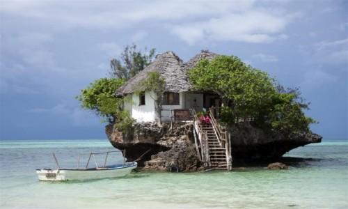 Zdjęcie TANZANIA / Zanzibar / Zanzibar / Zanzibar