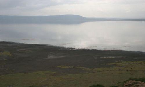 Zdjecie TANZANIA / brak / wioska MAsajów / kobieta z wioski Masajów