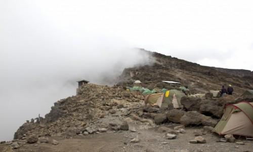 Zdjecie TANZANIA / Kilimanjaro / Baza Kilimanjaro / Kilimanjaro Base Camp