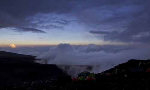 Zdjecie TANZANIA / Kilimanjaro / Kilimanjaro / W drodze na Kilimanjaro